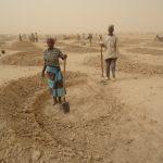 Crisi alimentare e desertificazione a Dosso, Niger